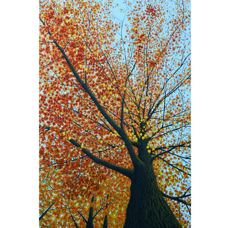 "The Heart of the Autumn 16"" x 16"""
