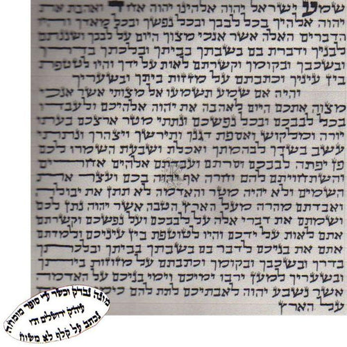 Large Kosher Scroll