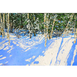 Michael Zarowsky - Birches 20x29