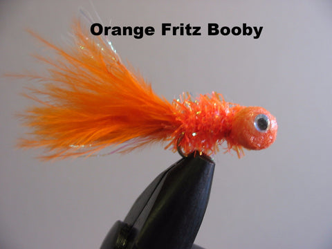 Orange  Fritz Booby