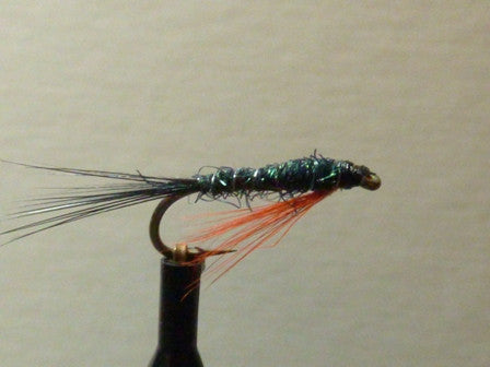 Wtd Black & Orange Glister nymph