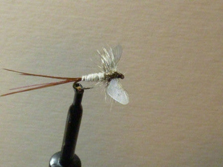 Winged Mayfly Spinner