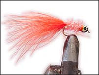 Shimmer Nobbler Orange