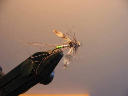 Tungsten Gold Head Pearly Daddy Long legs
