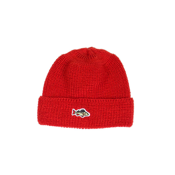 ABORRE RIB KNIT BEANIE - red