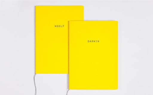 Big thinkers Notebook - Darwin Woolf
