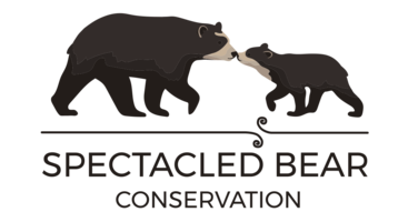 Spectacled Bear Conservation
