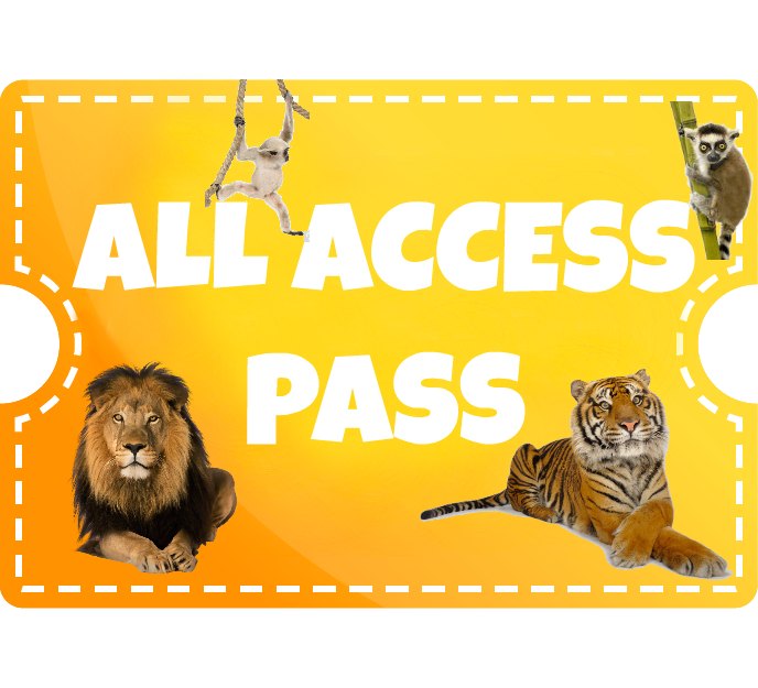 All Access Pass - Child (2-12)