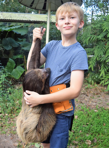 Private Animal Encounters for 4 - Sloth