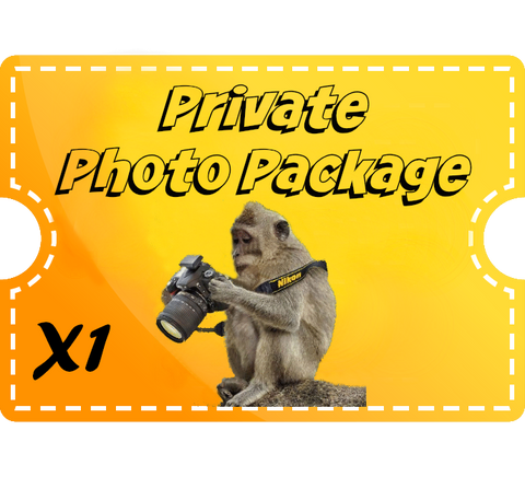 Private Photo Tour - 1 hour - per person - add'l Hour