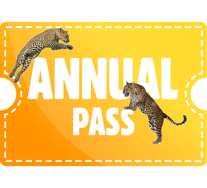 Annual Pass - Family of 3