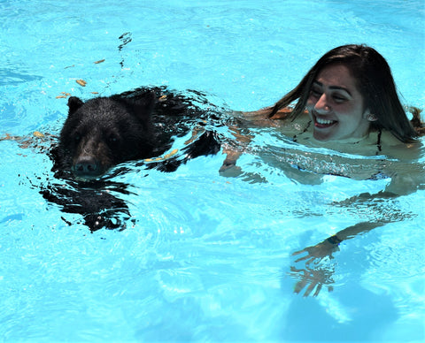 Swim with a Bear and Land Ultimate Experience
