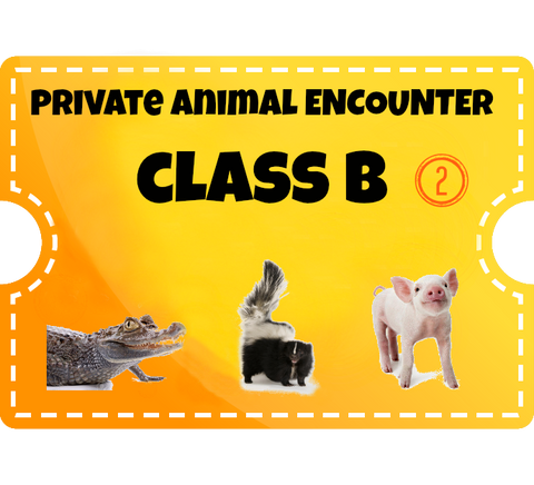 Private Animal Encounters for 2 - Class B