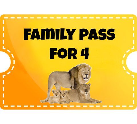 Family Pass for 4 with Big Cat Option