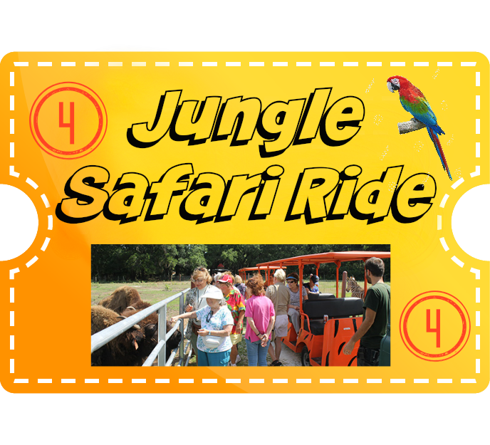 Jungle Safari Ride & 4 Encounters (Including Tiger) - Adults