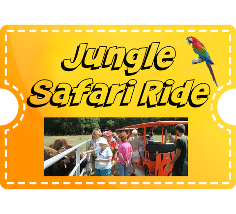 Jungle Safari Ride - Free Child (under 2)