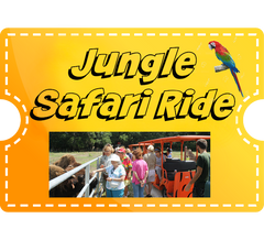 Jungle Safari Ride