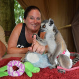 Animal Encounter:  Class A - lemur