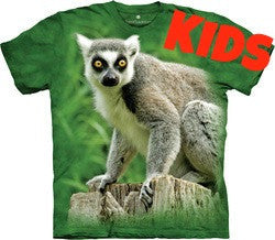 Ring Tail Lemur - Kids
