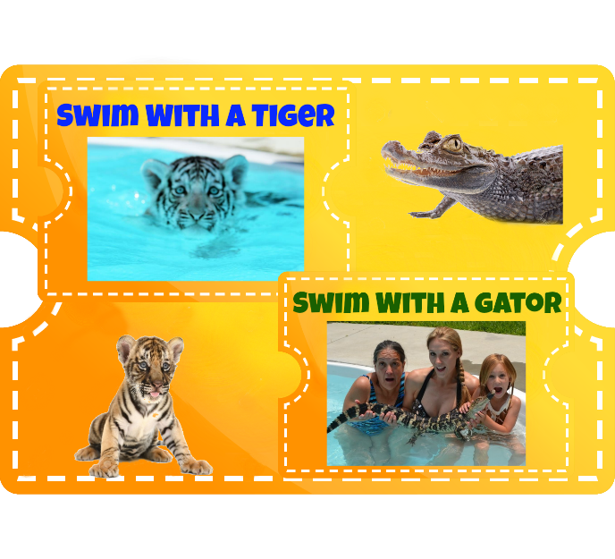 Swim with a Tiger & Otter Combo