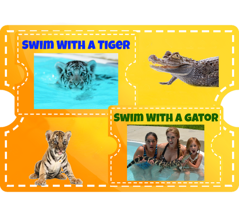 Swim with a Tiger & Gator Combo