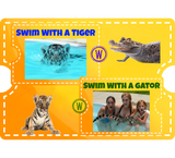 Swim with a Tiger & Otter - Watcher