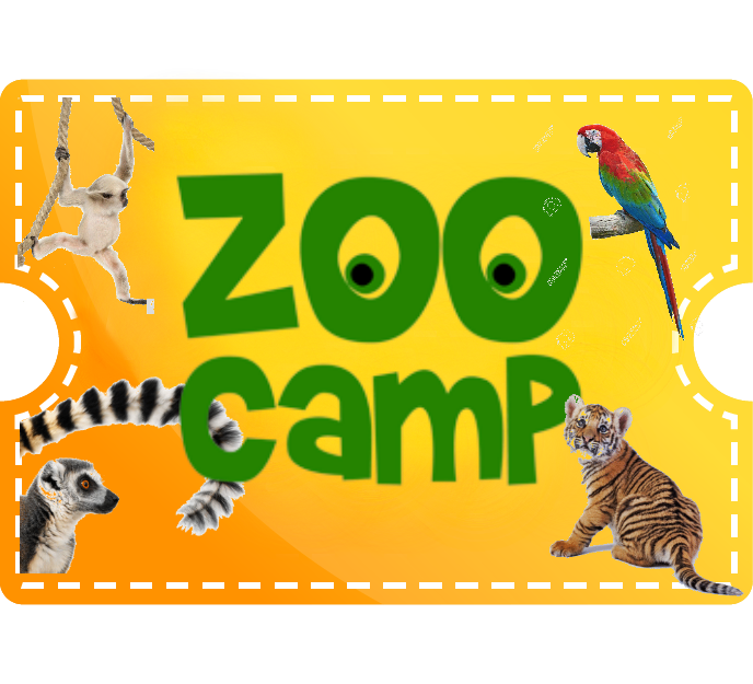 Zoo Camp - 1 Day Camp