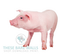 Farm Animal Prints - These Bare Walls - 7