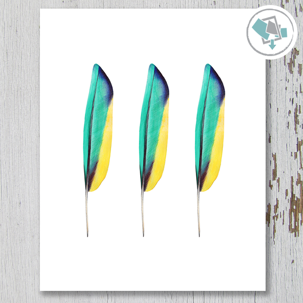 3 Feathers Blue/Green/Yellow Printable Art - These Bare Walls