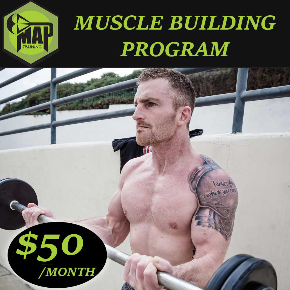 Muscle Building Program
