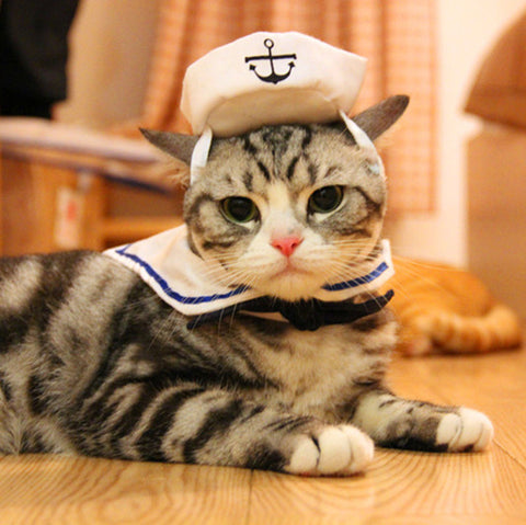 Sailor Costume for Cats (Adjustable)