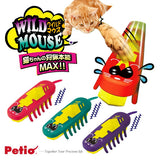 Cat Interactive Bug Toy