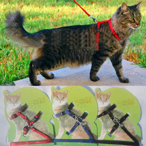 Adjustable Nylon Cat Harness and Leash