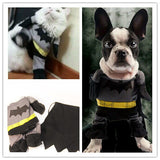 Cool Cat Batman Costume