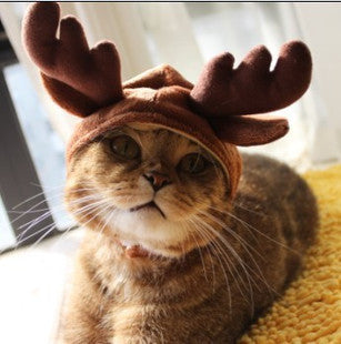 Fashionable Cat Costume Holiday Hat