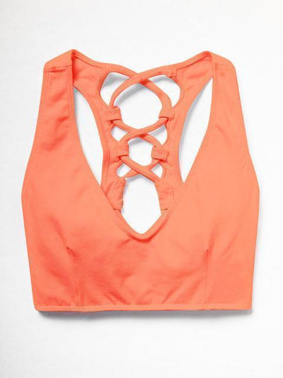 Sports Bras Trendy & Sexy Designed Fitness Sports Bra