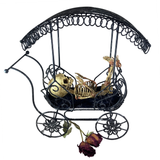 Vintage Fetus in Metal Carriage