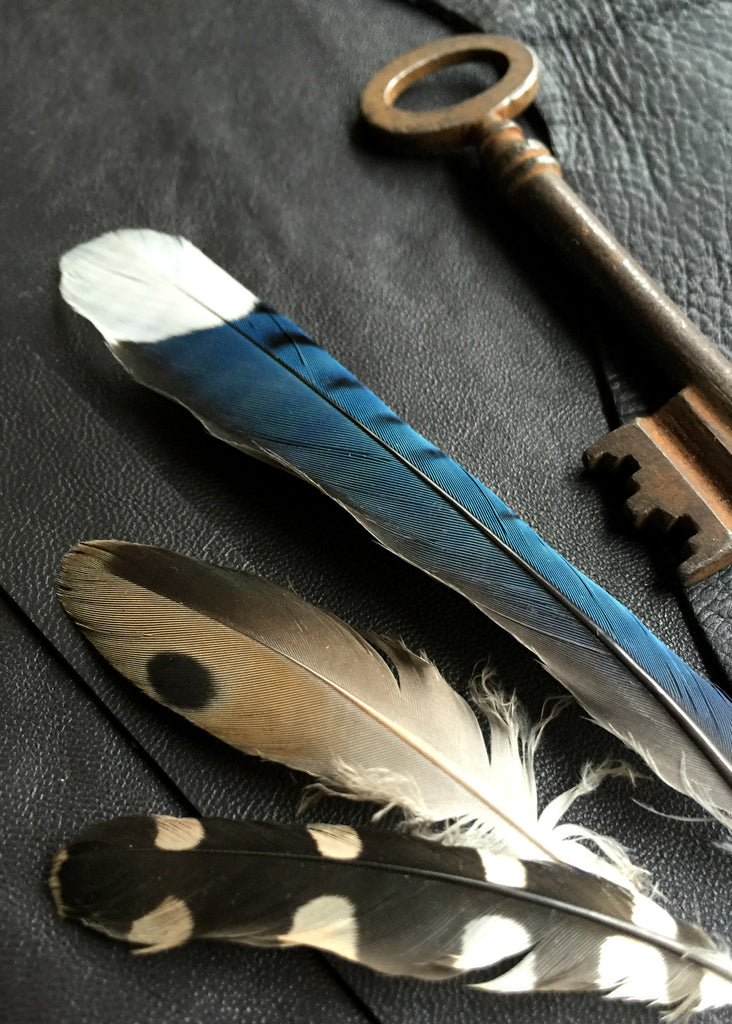 feathers and keys