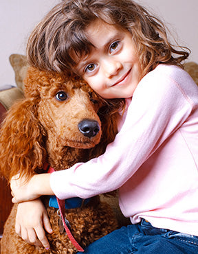 Poodle with Child