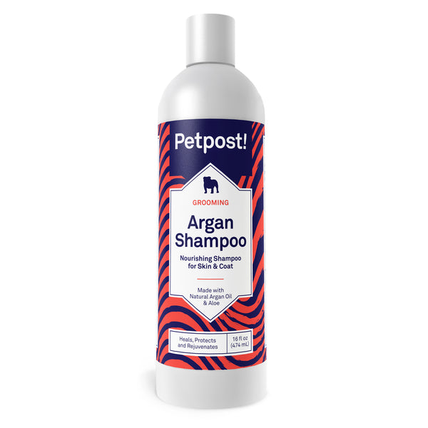 argan shampoo for dogs with dry itchy skin