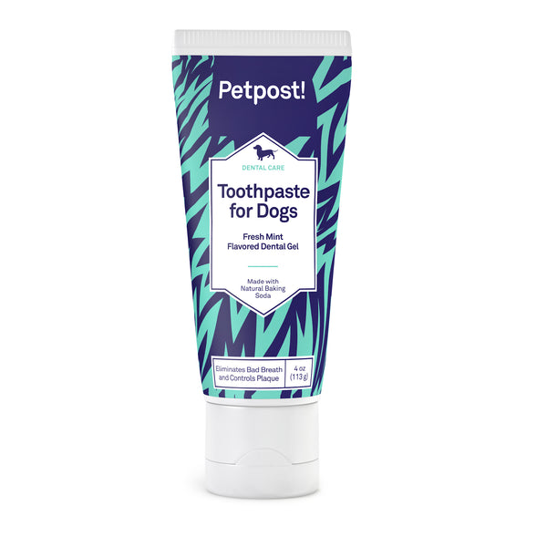 petpost toothpaste for dogs