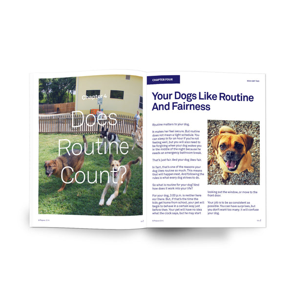 Dogs Can't Talk - Ebook Download - Does Routine Counts