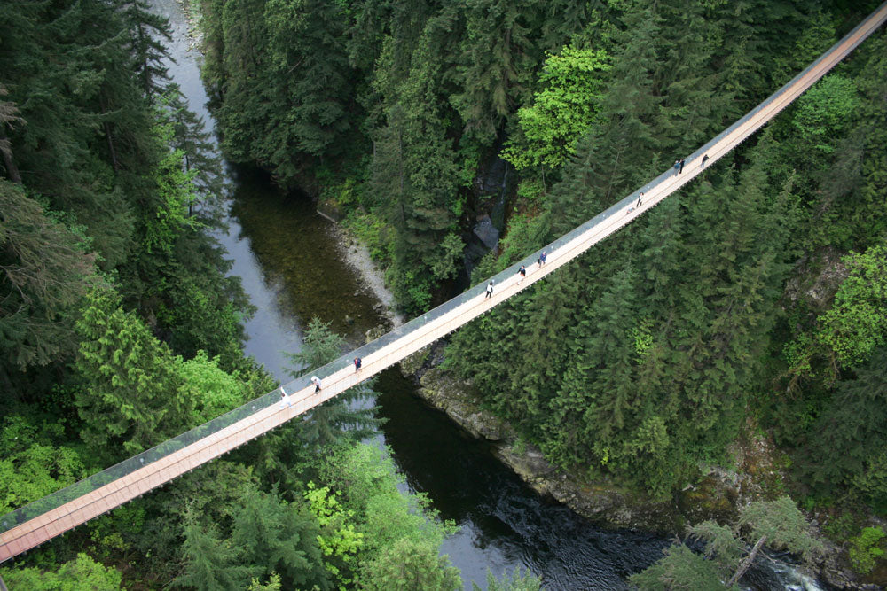 Capilano Suspension Bridge Four Day Passes