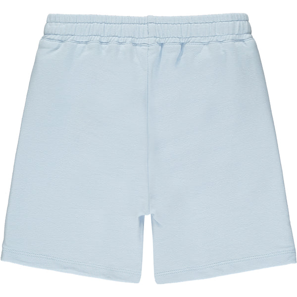 Bridge Shorts