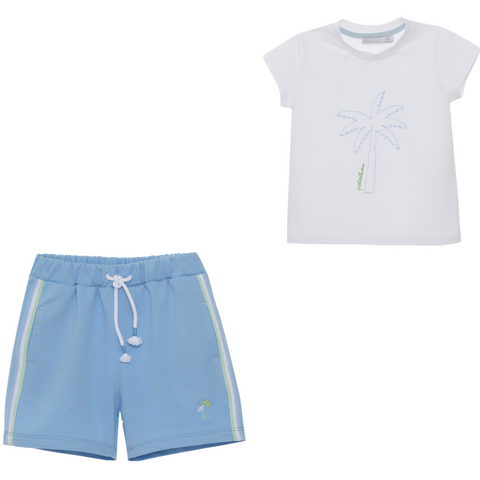 Boys Shorts and Tee Set