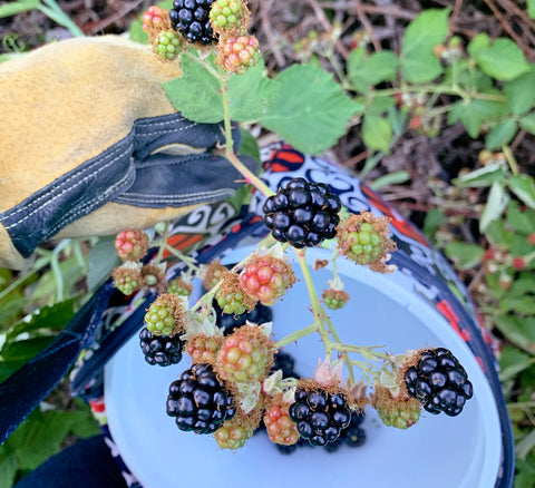 Having the Right Weightlifting Gear and BlackBerry Picking