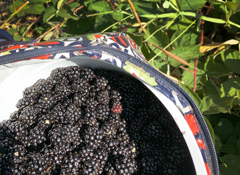 Bucket of Oregon Blackberries and How it Relates to Weightlifting
