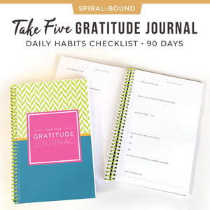 Five Minute Gratitude Journal Habits Self Affirmations 3-Month Daily Journaling