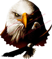 American Bald Eagle Head Combo Wall Art Wall Decal Indoors Outdoors Large