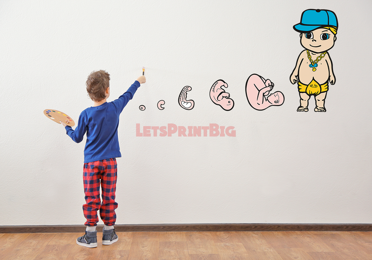 Baby Progression Stages of Growth Wall Decals - Let's Print Big